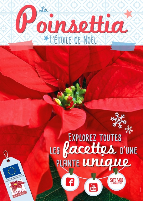 poster-poinsettia-2016-stars-for-europe_hdf-low