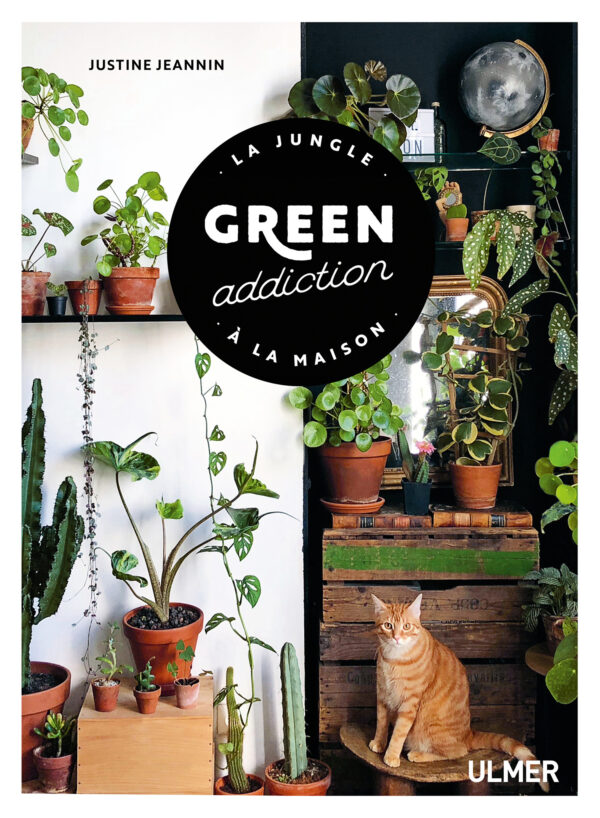 ivre plantes d interieur green addicition justine jeannin ulmer urban jungle fleur creatif